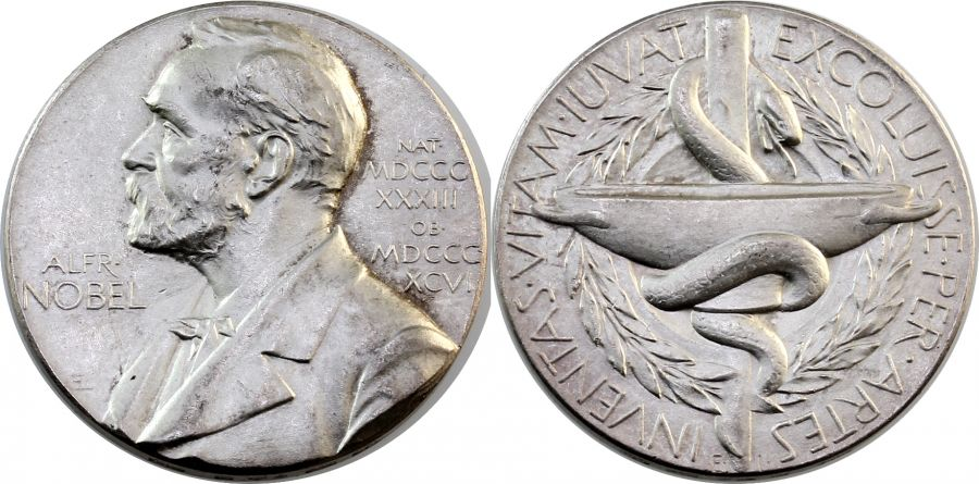 Silver Noble Prize Medal